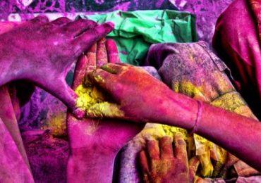 Galería | La vida de colores