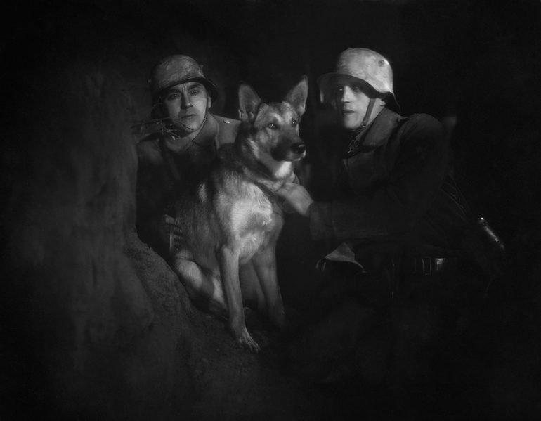 Galería | Los perros en la historia