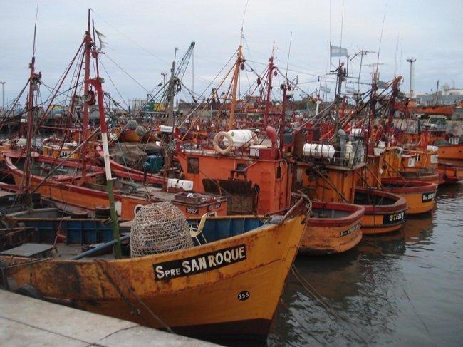 Gastronomía y pesca sustentable