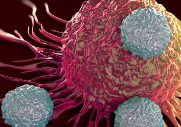 Guía rápida para entender el cáncer