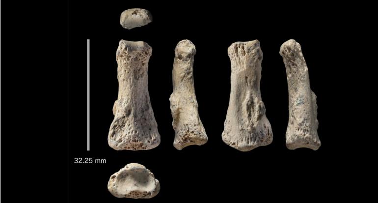 Hallan al Homo Sapiens más antiguo fuera de África de más de 85