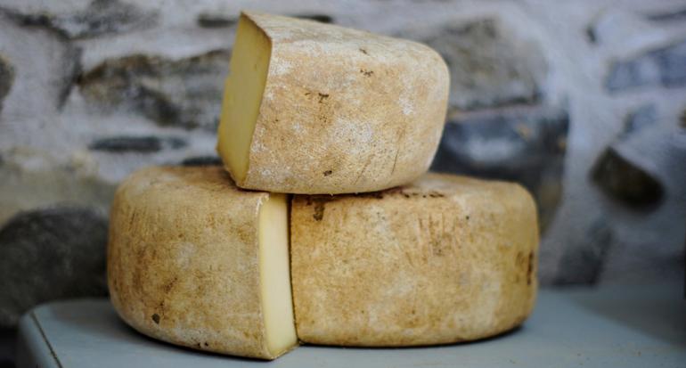 Hallan el queso más antiguo de la historia en una tumba en Egipto