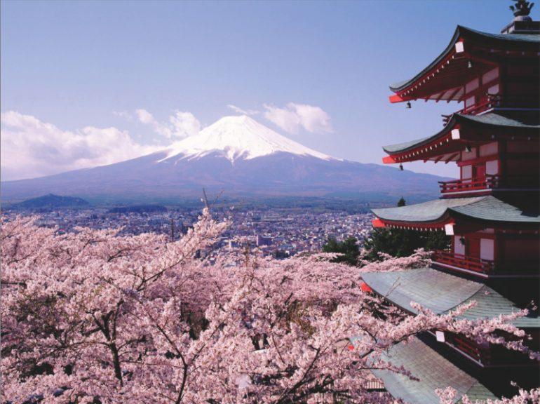 Japón para todos