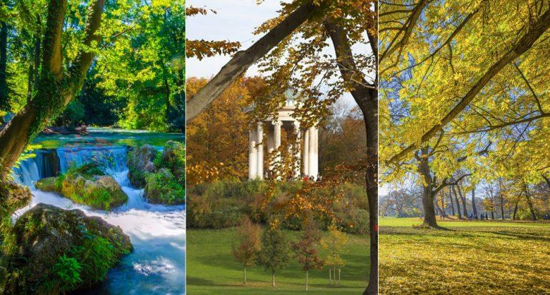Jardín Inglés en Munich