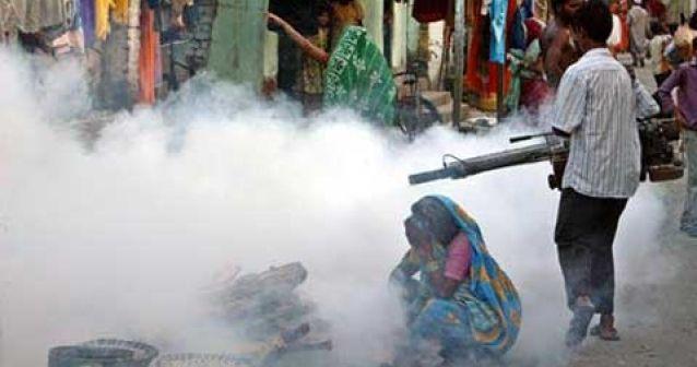 La amenaza de la fiebre del dengue regresa