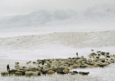La dieta de altura de los nómadas de Afganistán