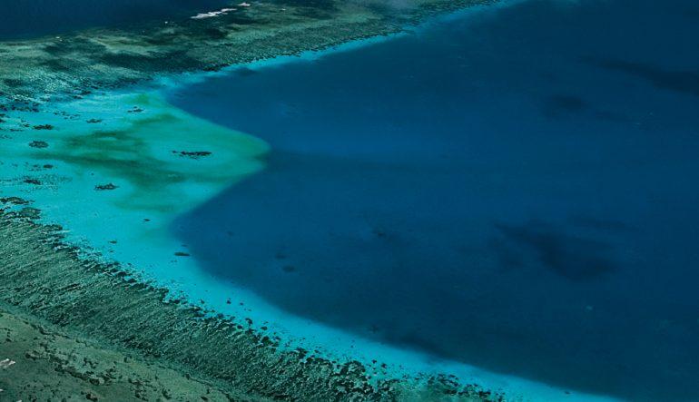 La gran barrera arrecifal: un imperio frágil