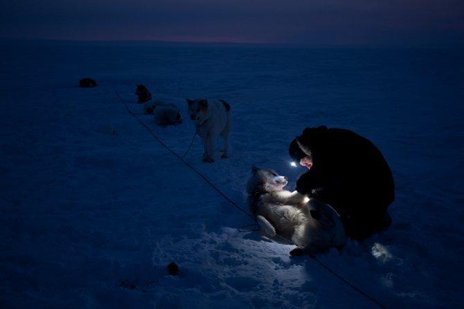 La patrulla polar