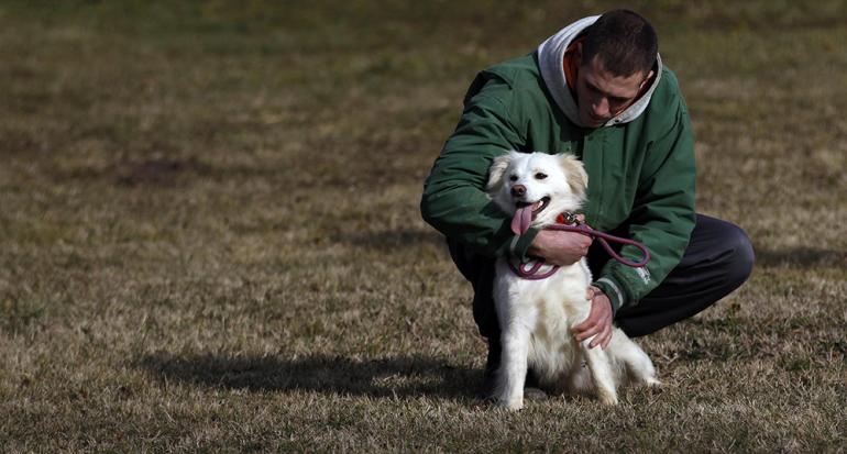 La prisión más grande de Serbia se vuelve un refugio para perros callejeros