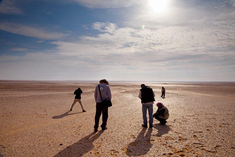 Las Ballenas del Desierto
