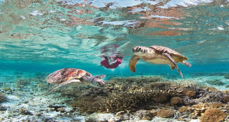 Las Islas de Queensland
