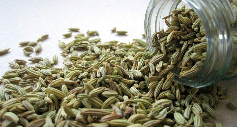 Las bondades de las semillas del hinojo