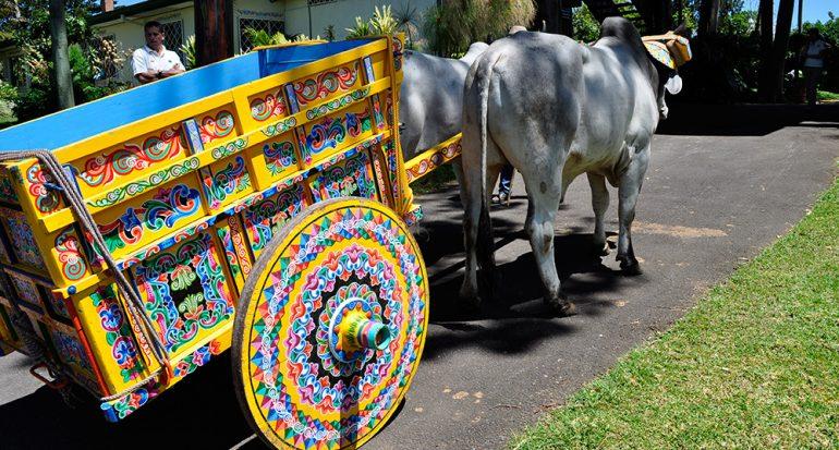 Las carretas de Costa Rica