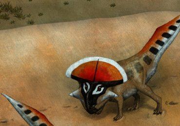 Las estrategias de los dinosaurios con cuernos