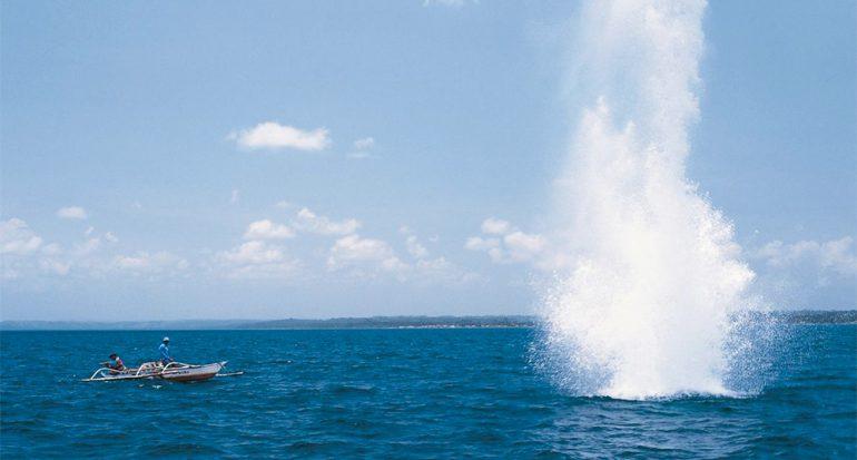 Las explosiones contra la vida marina en Tanzania