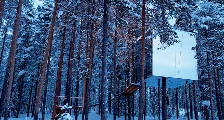 Las habitaciones en los árboles