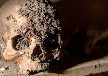 Las momias siguen contando historias