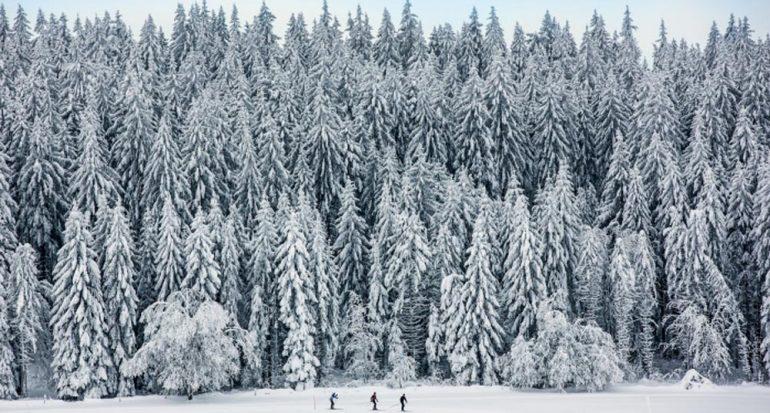 Las vacaciones en la nieve empezaron con una apuesta