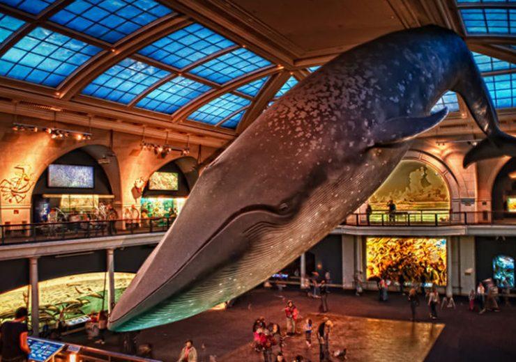 Los 7 mejores museos para visitar en Nueva York
