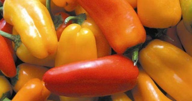 Los americanos cocinaban con chile hace 6 000 años
