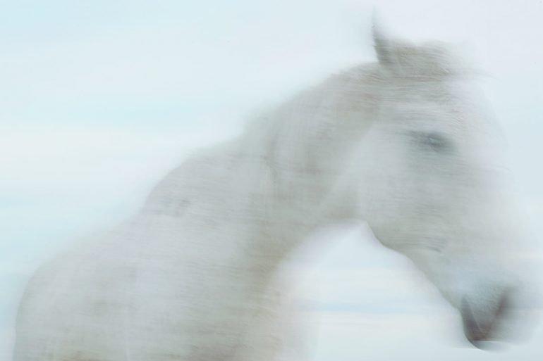 Los pueblos del caballo