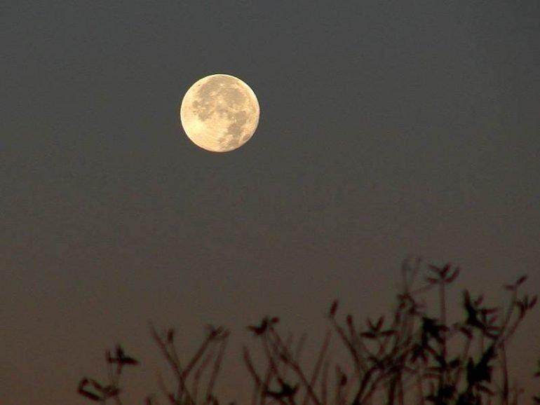 Luna delgada