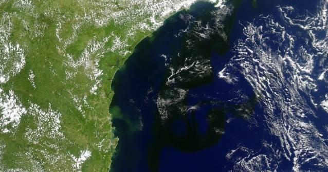 Mancha gigante aparece en la costa de Brasil
