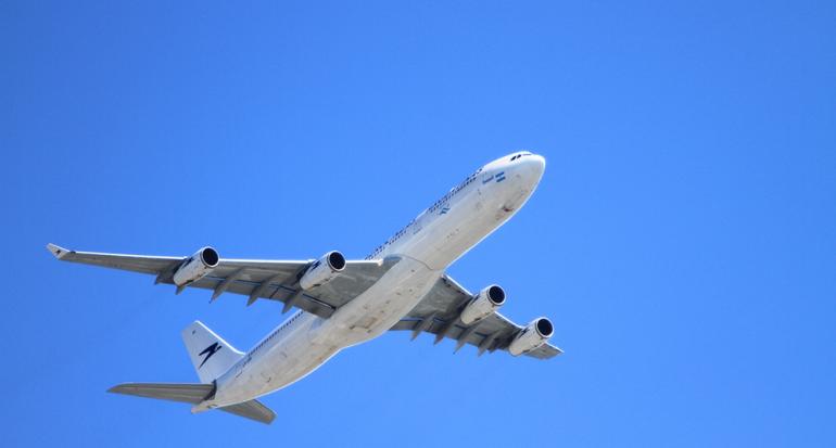 Muere un perro por negligencia del personal de United Airlines