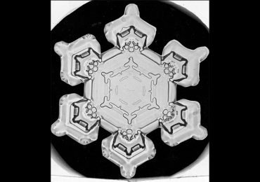 Las primeras fotos de copos de nieve