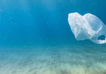 Nueva Zelanda prohibirá en el 2019 las bolsas de plástico