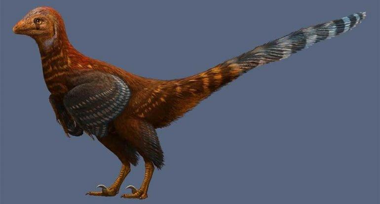 Nueva especie de dinosaurio tenía plumas como las aves modernas