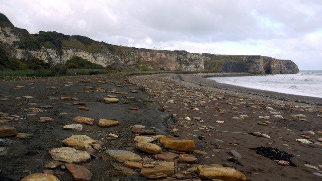 Playas limpias certificadas (P.2)