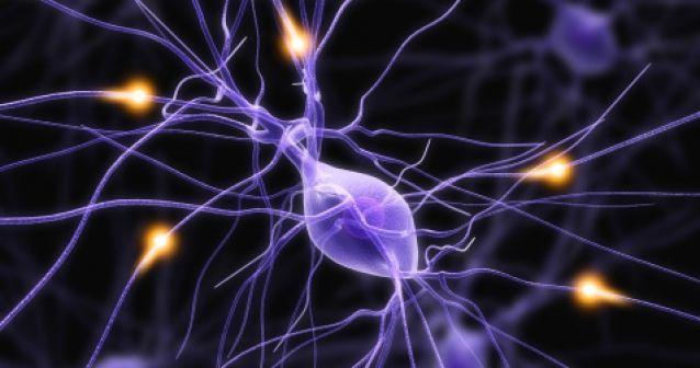 Prótesis neuronal neuronas