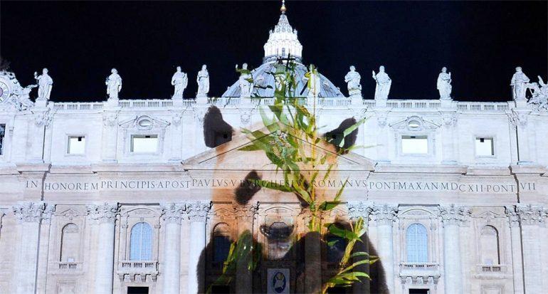 Proyectan impresionantes fotos de animales en el Vaticano
