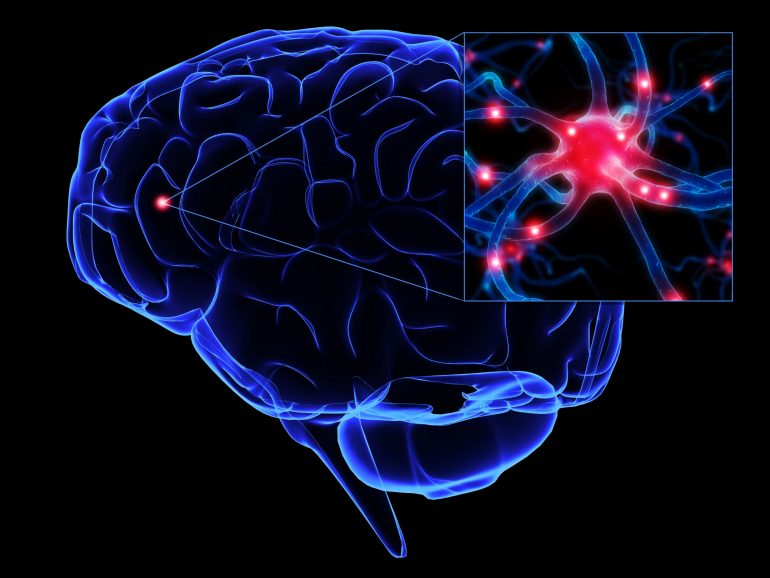Proyecto del Cerebro Azul