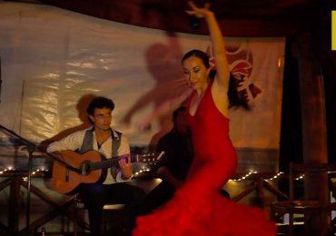 Puerto Morelos: Hogar de los artistas