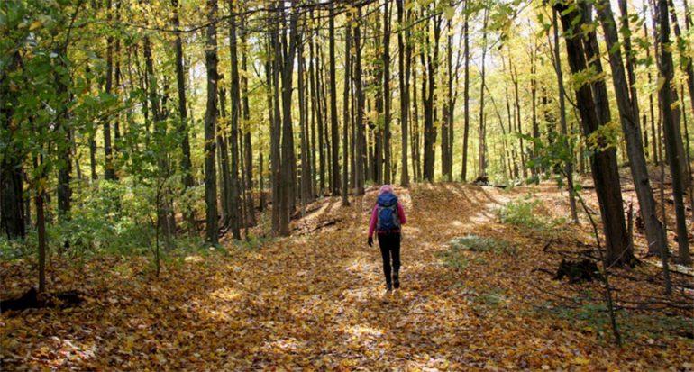 Recorre el sendero canadiense más antiguo