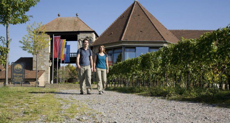 Ruta del Vino en la frontera franco-alemana