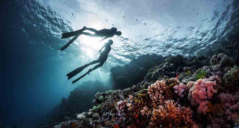 Salvar los mares
