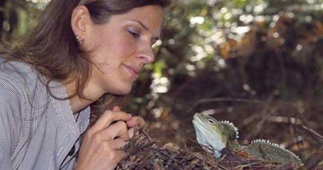 Se libera reptil robot en la naturaleza