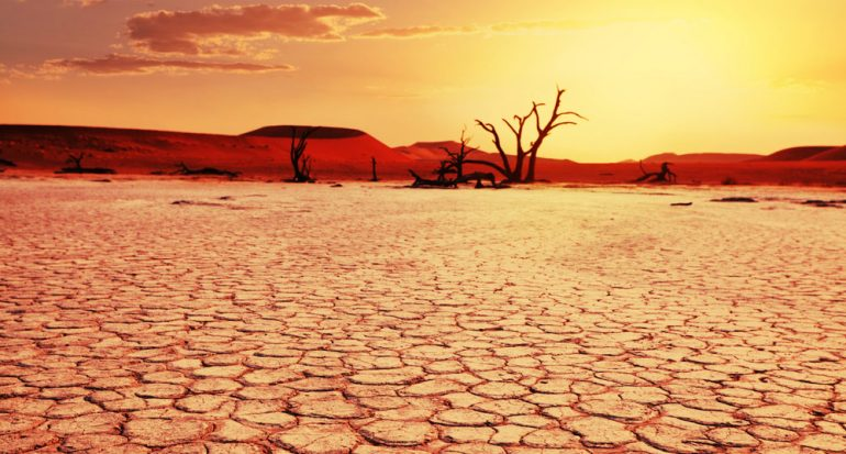Sorprendentes paisajes desérticos