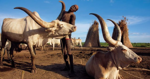 Sudán del Sur: nace un nuevo país