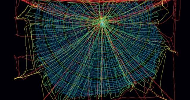 Telaraña | La red más ancha del mundo