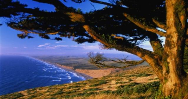 Terremoto restaura las playas