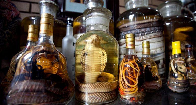 Vino de serpiente y otros ?recuerdos salvajes? que debes evitar