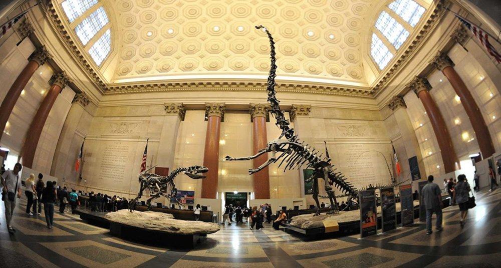 Los mejores museos para visitar en Nueva York