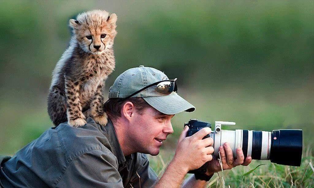 10 Fotografos Que Fueron Sorprendidos Por Los Animales National
