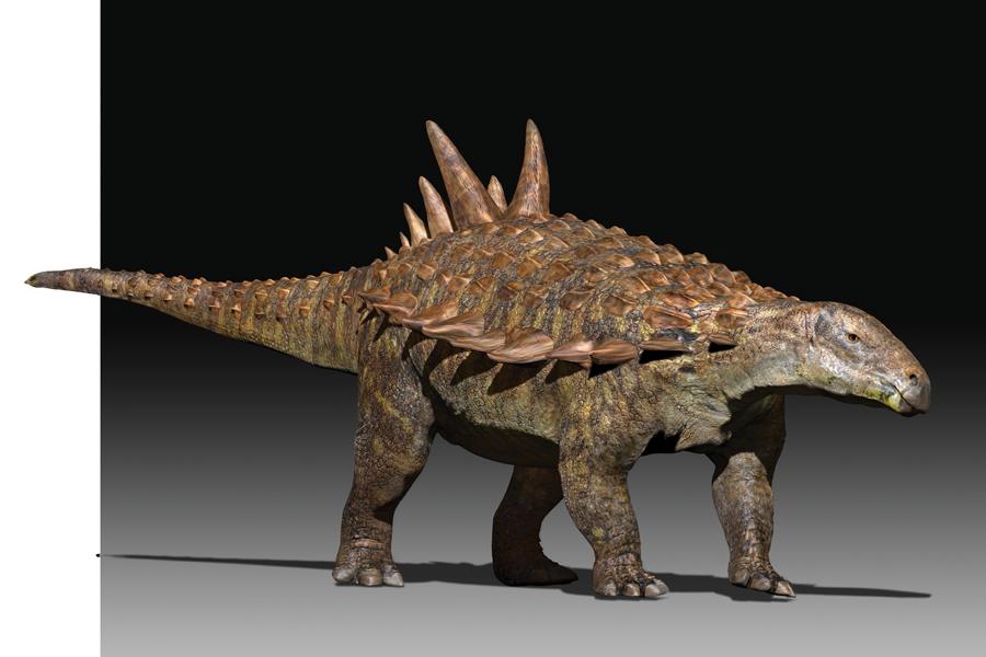 Encuentran Una Nueva Especie De Dinosaurio En Mexico National Geographic En Espanol En esta lista sólo encontrarás. nueva especie de dinosaurio en