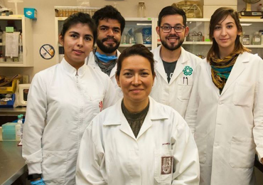 virus del Papiloma humano mexico