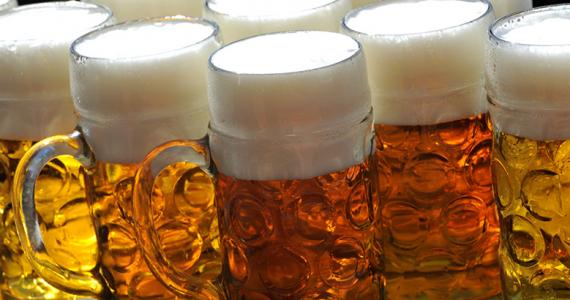 cerveza idioma